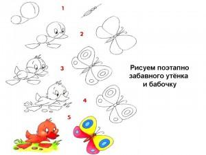 Рисуем поэтапно забавного утёнка и бабочку