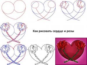 Как рисовать сердце и розы
