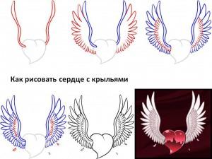 Как рисовать сердце с крыльями