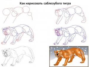 Как нарисовать саблезубого тигра