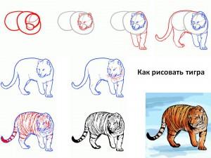 Как рисовать тигра
