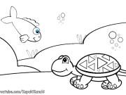 Малыш и черепаха
