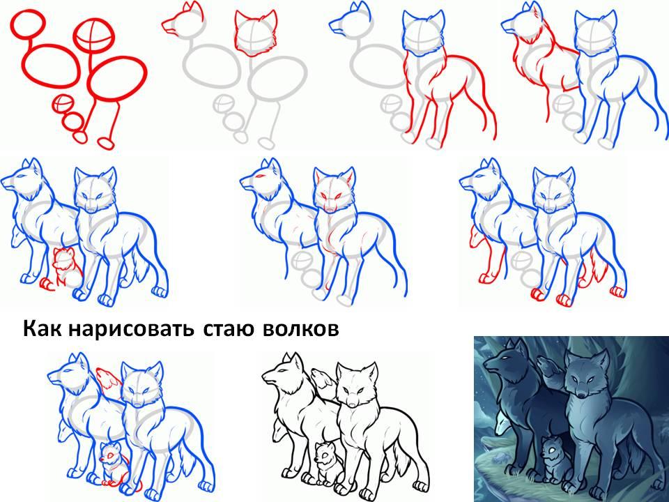 Как нарисовать стаю волков