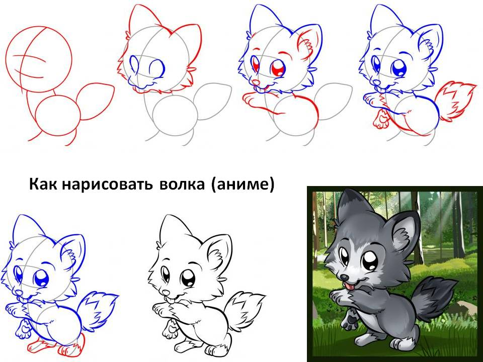 Как нарисовать волка (аниме)