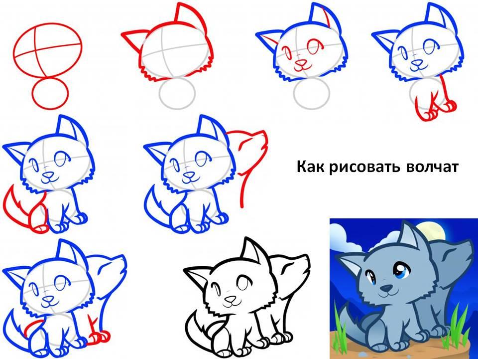 Как рисовать волчат