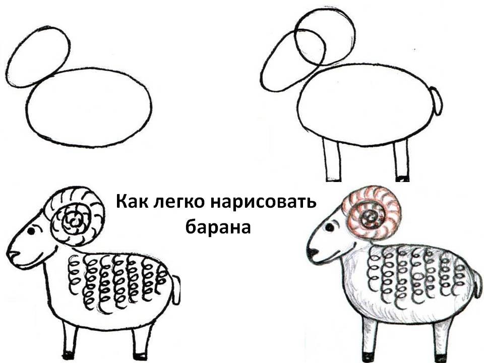 Как легко нарисовать барана