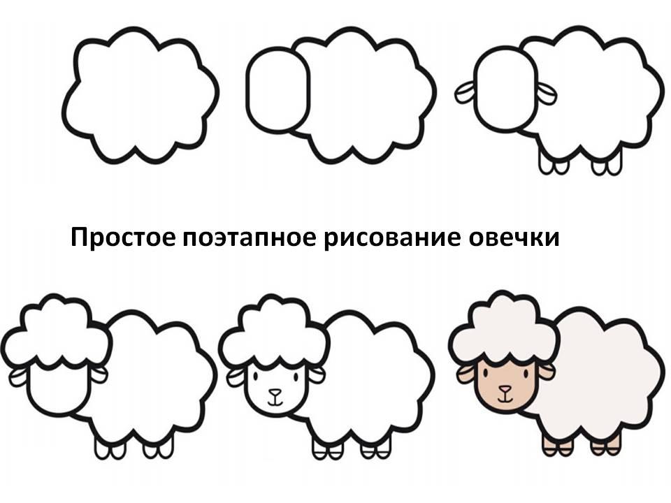 Простое поэтапное рисование овечки
