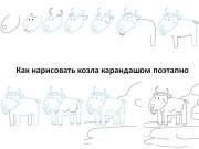 Как нарисовать козла карандашом