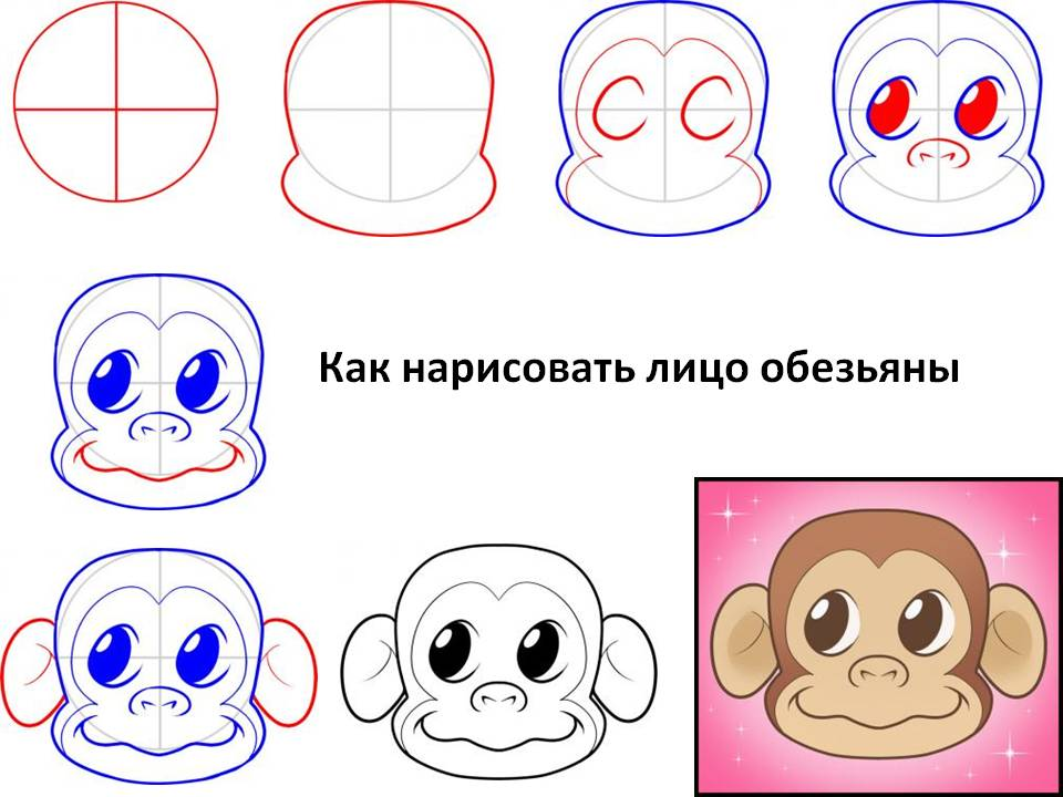 Как нарисовать лицо обезьяны