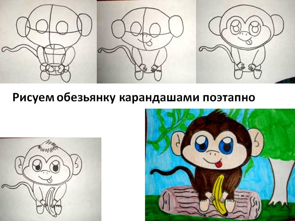 Рисуем обезьянку карандашами поэтапно