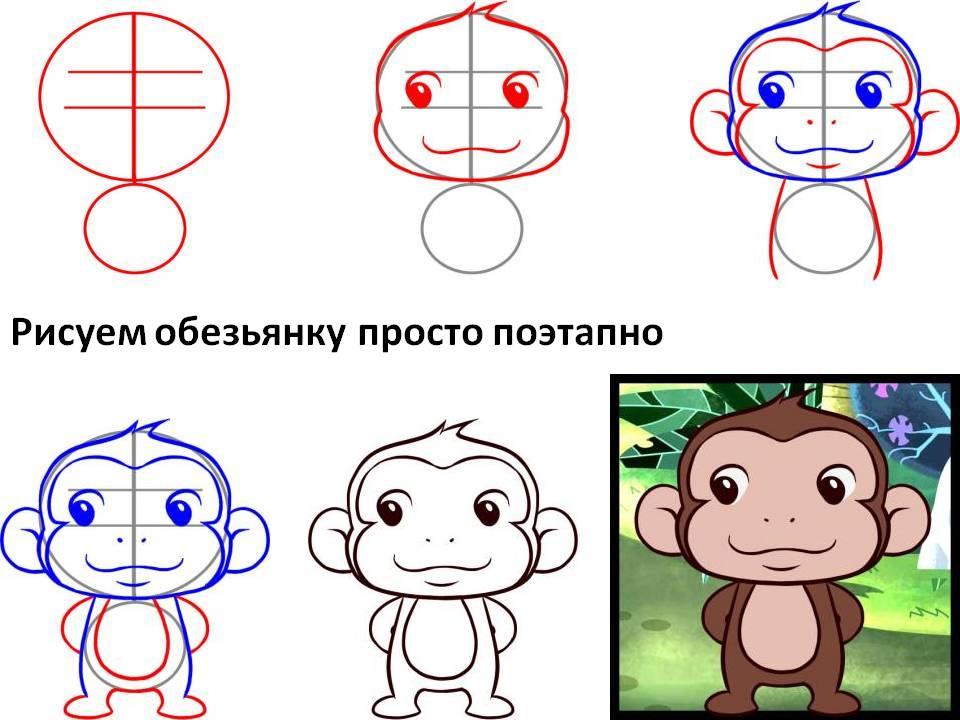 Рисуем обезьянку просто поэтапно