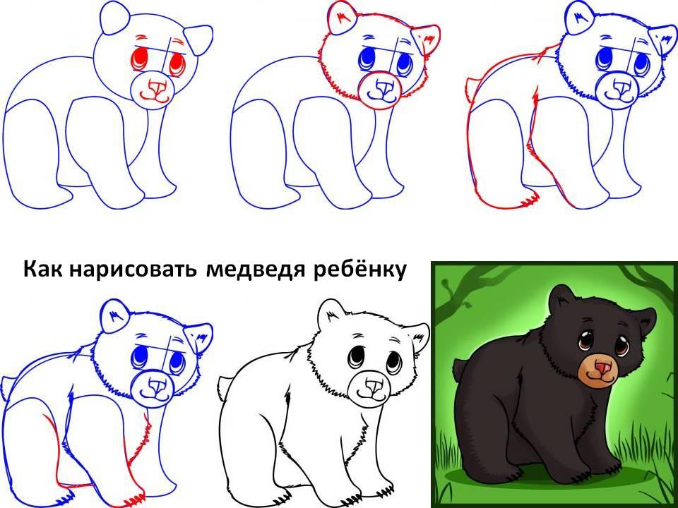 Как нарисовать медведя ребёнку